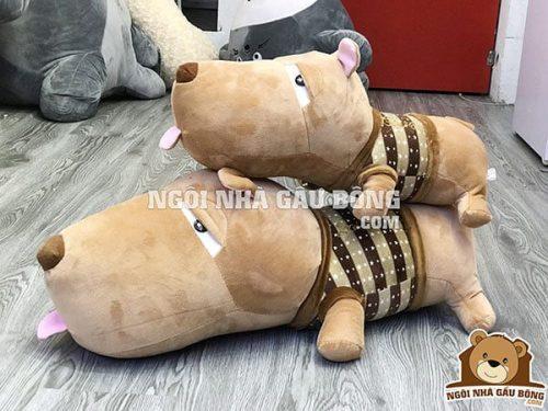 Chó puco