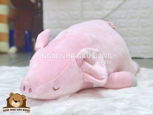 Lợn hồng ngủ