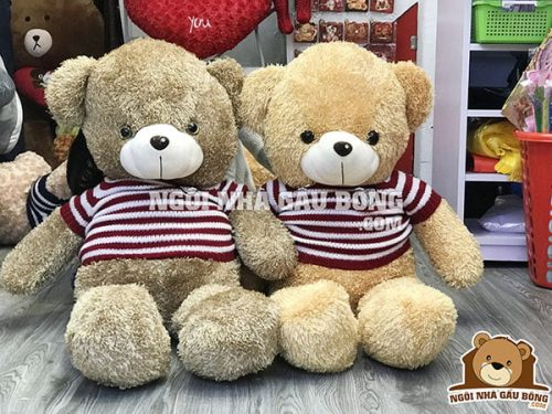 Teddy áo len VB