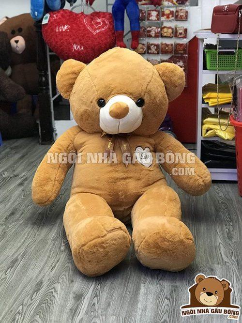 Teddy Đắp Tim
