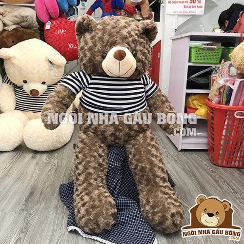 Teddy thun 1m6, giá 680.000đ.