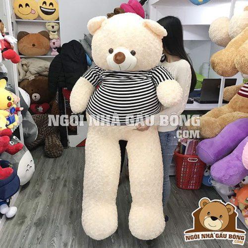 Teddy thun