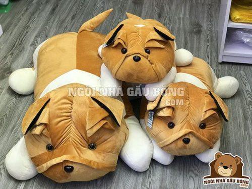Chó nhăn