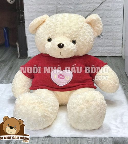 Teddy Áo Len HT