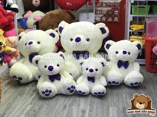Teddy nơ tím
