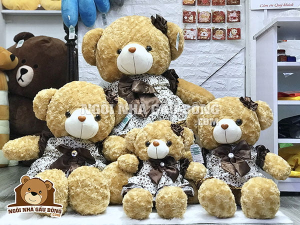 gấu teddy dễ thương