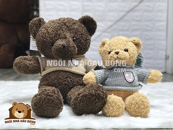 Gấu bông - Cover