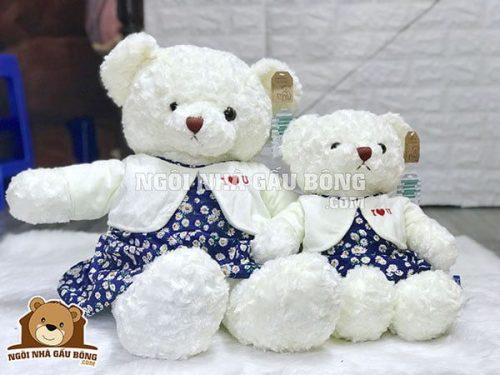 Teddy Hug Me Đôi