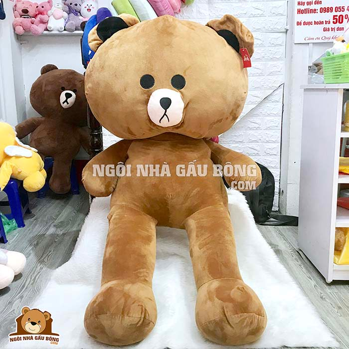 Gấu Brown
