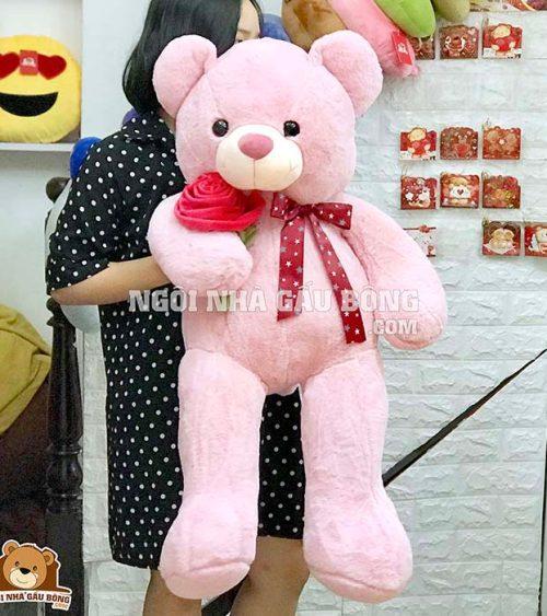Teddy Ôm Hoa Mịn