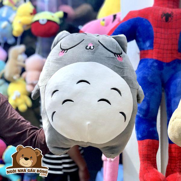 Totoro Biểu Cảm