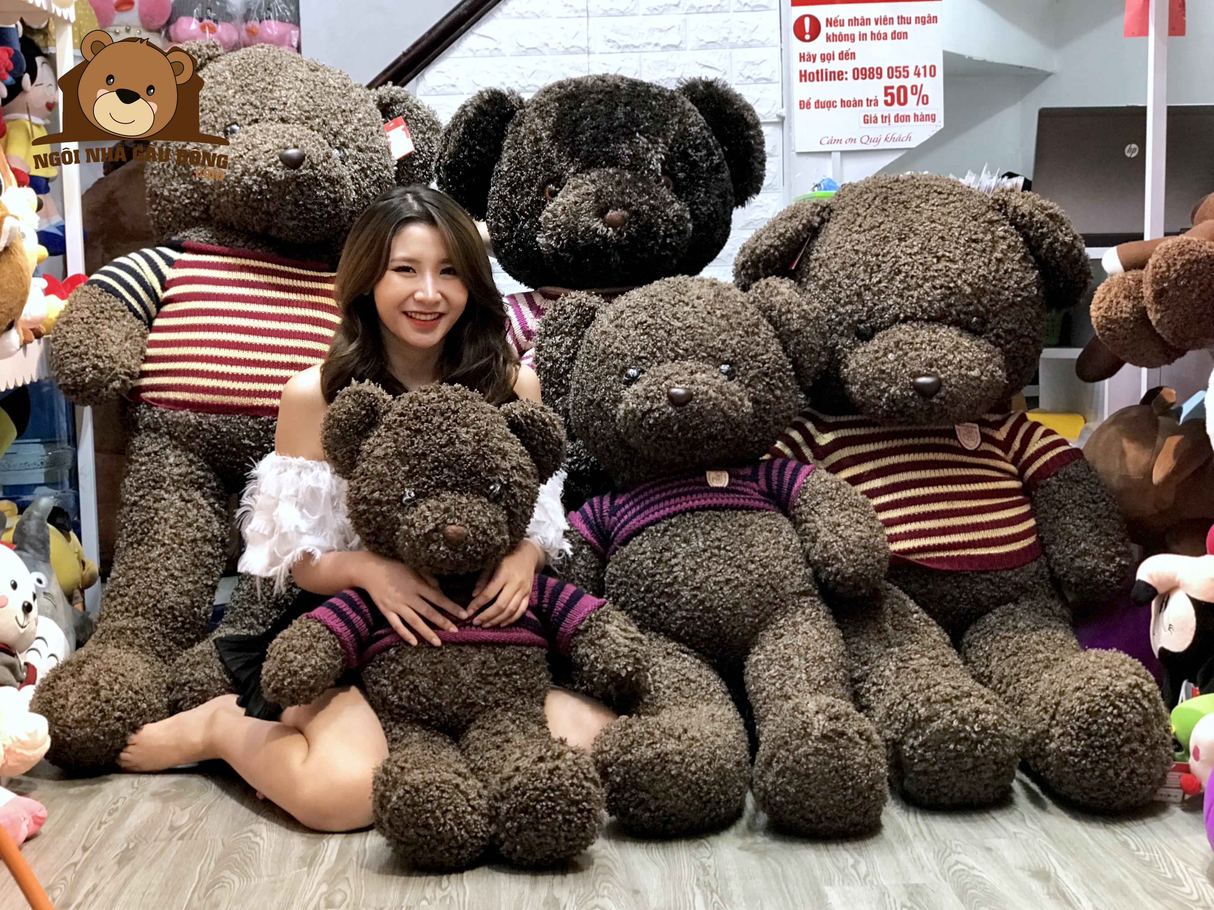 Teddy đen xù đại