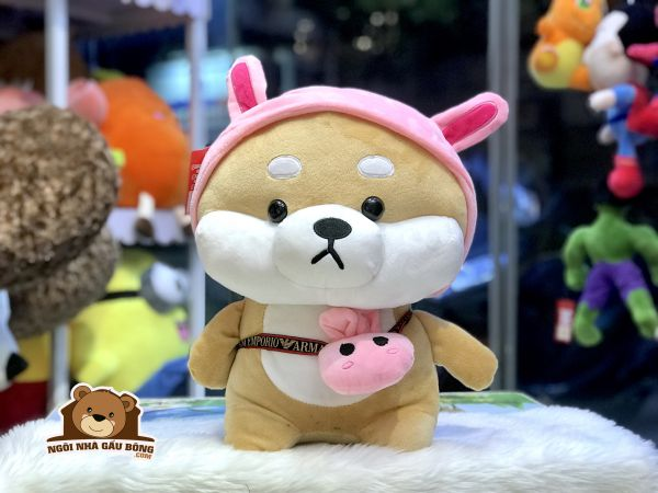 Chó Shiba HT