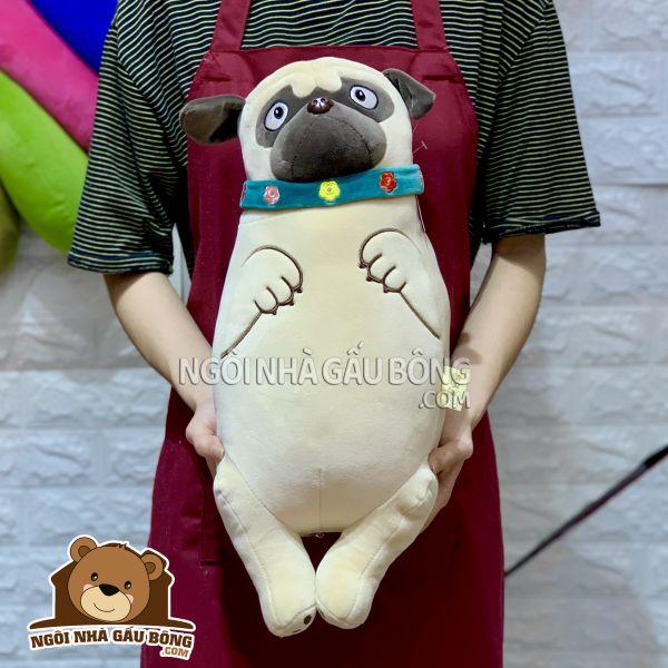 Chó Pug Đứng